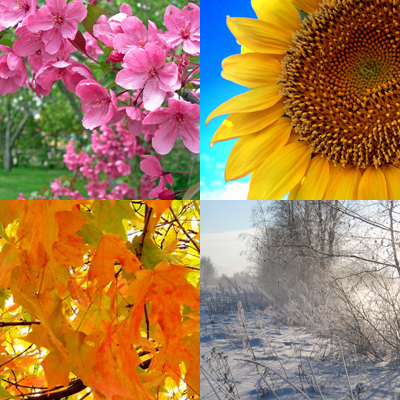 Seasons…. « Sandi's Blog